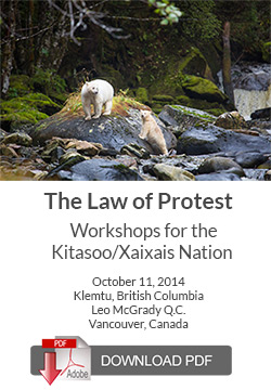 Guide to the Law of Protests in BCKlemtu Workshop